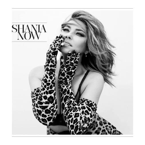 shania now